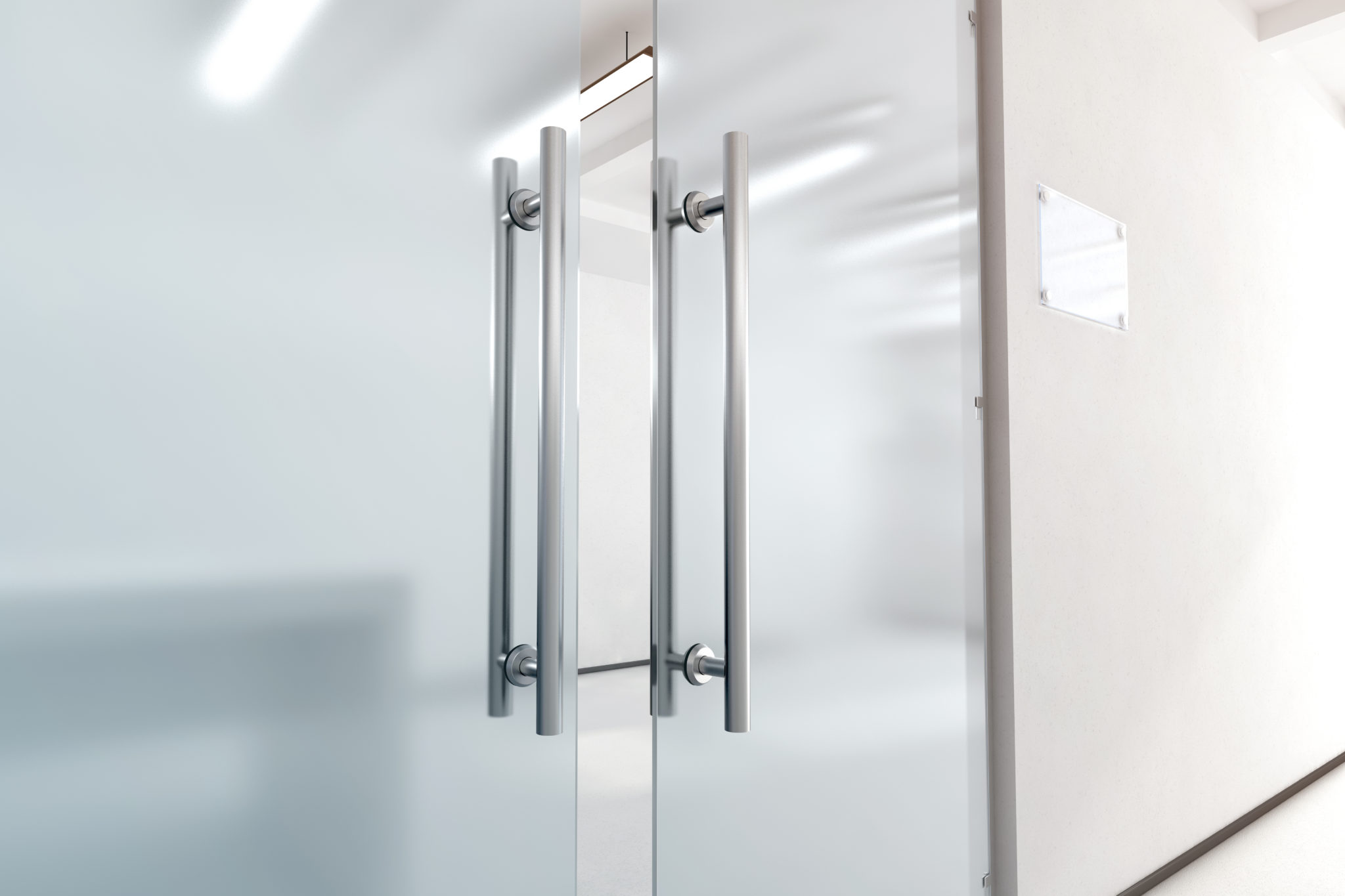 frameless-glass-pivot-door